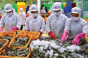Kho lạnh thủy hải sản