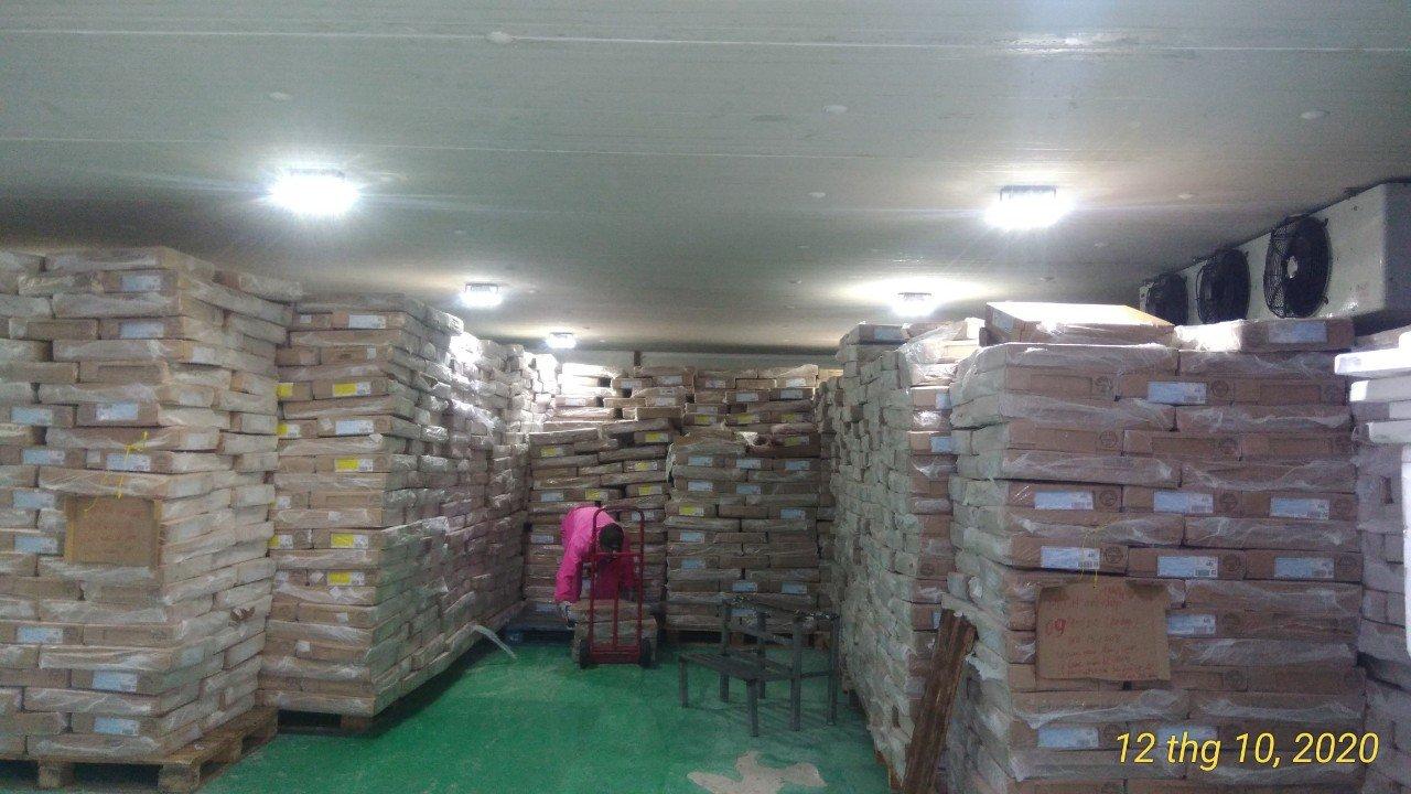 Kho lạnh bảo quản nông sản TST 100S
