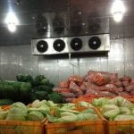 Đầu tư tăng công suất kho lạnh thực phẩm