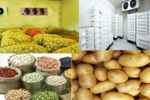 Quy trình về cách thức bảo quản khoai tây giống trong kho lạnh